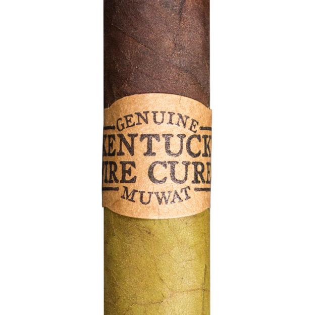Drew Estate Kentucky Fire Cured Swamp Thang cigar